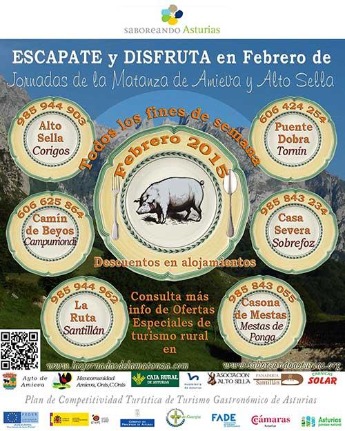 cartel2015-matanza1